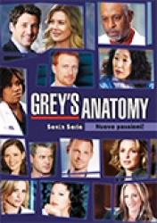 Grey's anatomy. Sesta serie