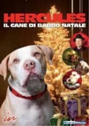 Hercules il cane di Babbo Natale